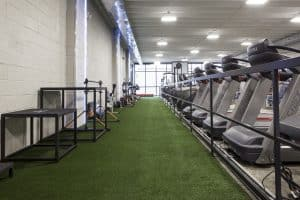 Training Station turf with platforms